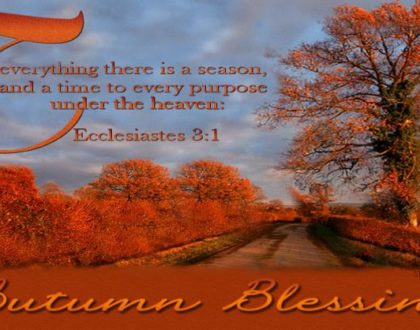 Autumn Blessings: Proverbs 12:2